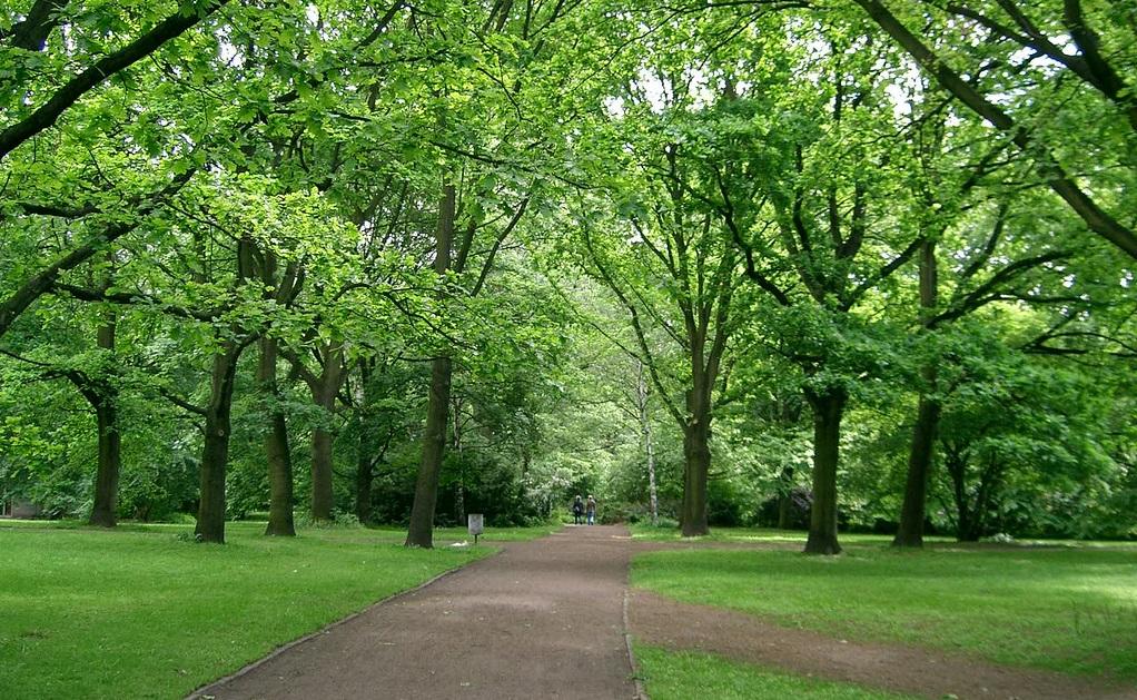 Tiergarten il parco che racconta berlino vivi berlino for Gewerbefl che berlin